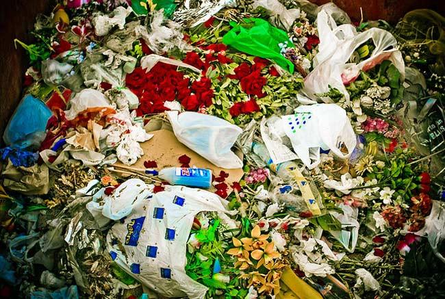 Problemas ecológicos de la basura