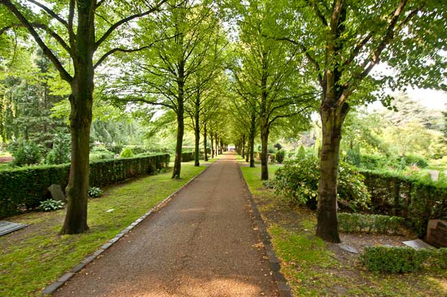 Copenhague ciudad verde 2015