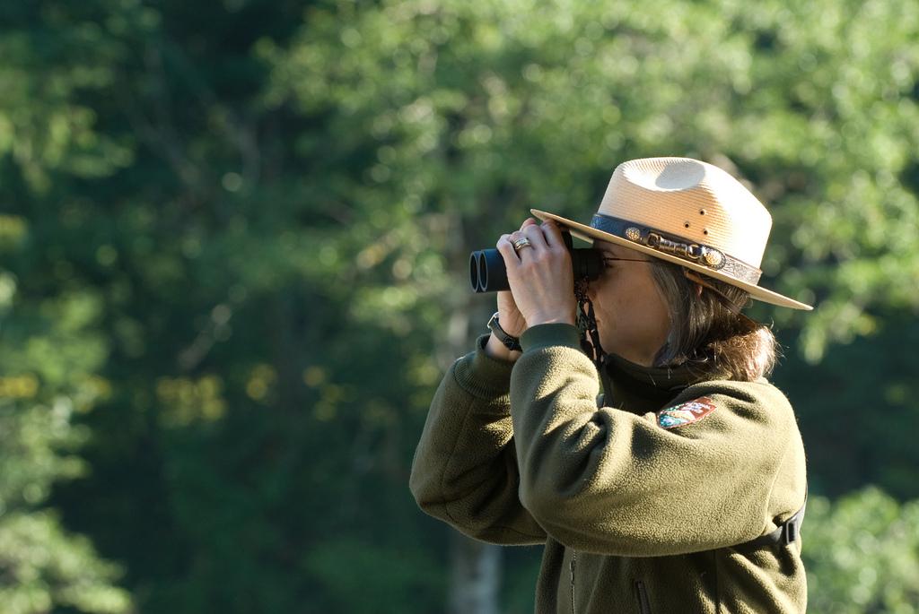 Bird watching o turismo ornitológico