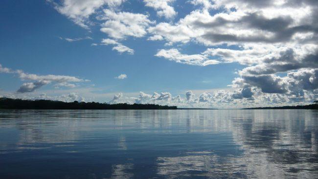 Las represas hidroeléctricas amenazan a la Amazonia