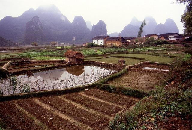 Cuidar a la persona: la ecología humana