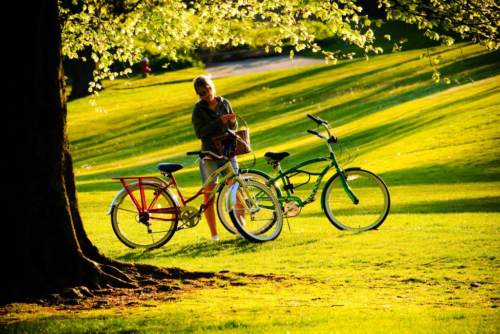 5 hábitos ecológicos a no olvidar