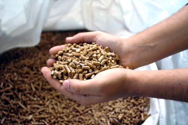 Disfrutar el invierno con calor ecológico de biomasa