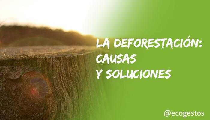 deforestacion causas y soluciones