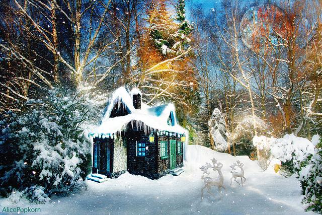 Navidad ecológica y sostenible