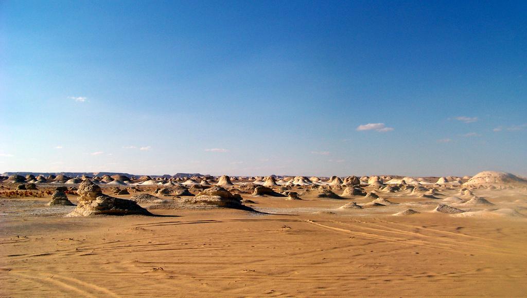 La desertificación, un problema que requiere un abordaje ...